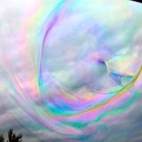 Des couleurs et des formes fantastiques